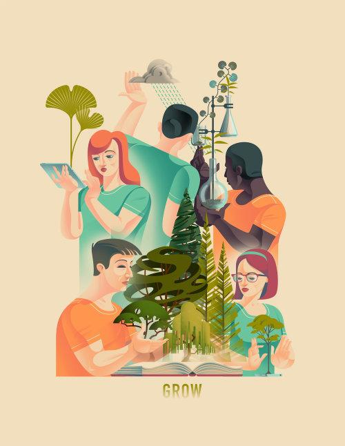 Arte do poster da biologia de planta
