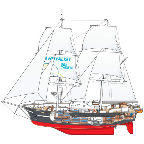 TS Royalist Sailing Ship illustration