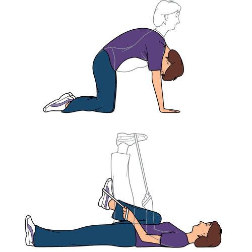 Exercises illustration by Mark Watkinson