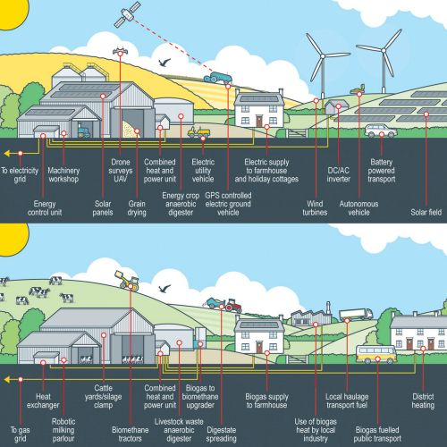 Infographic illustration of solar filed station