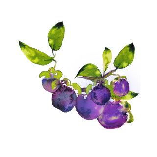 Huckleberry painting by Marta Spendowska