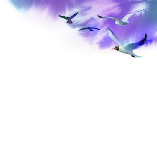 Painting of birds flying in the blue sky