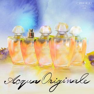 Perfume bottle illustration