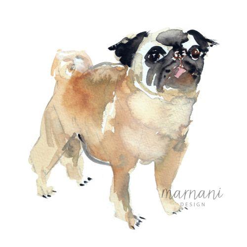 Pug dog illustration   Animal style gallery