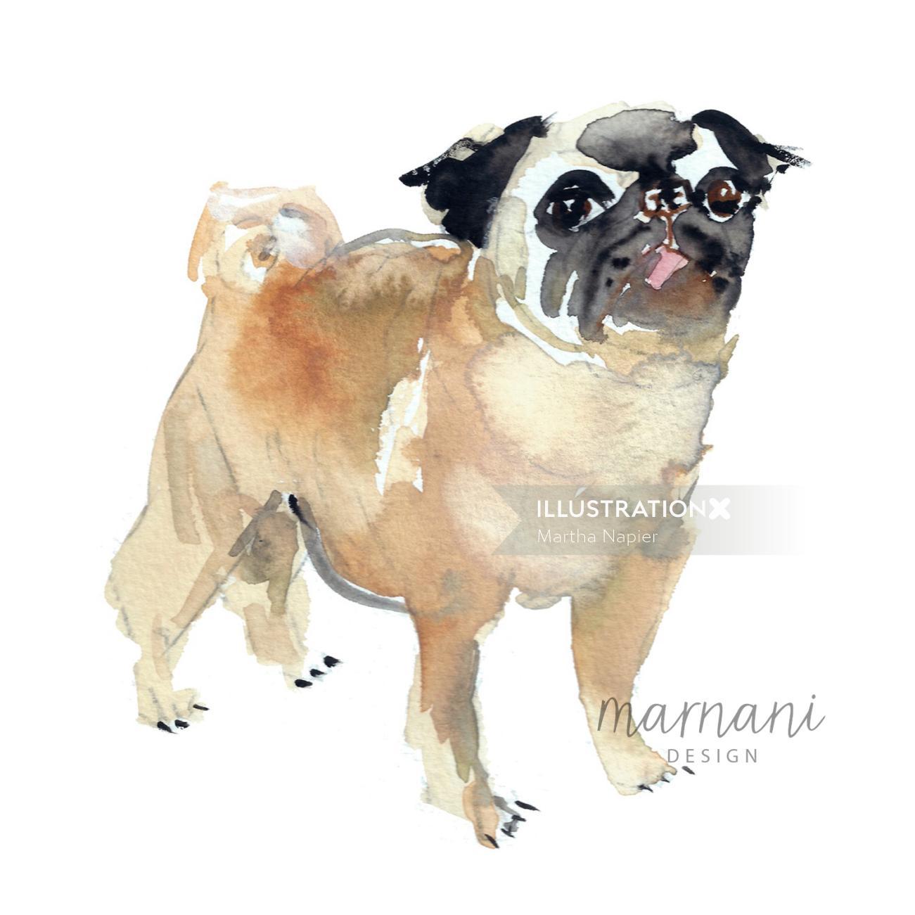 Pug dog illustration | Animal style gallery