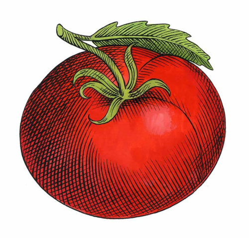 Nourriture et boisson tomate rouge