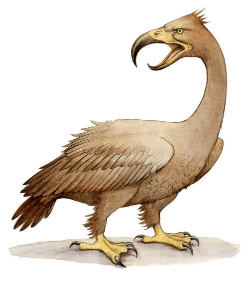 Pastiche art of Boobrie bird