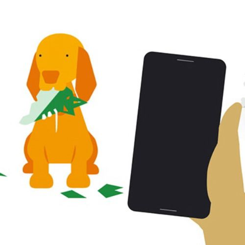 Motion graphics of dog and mobile