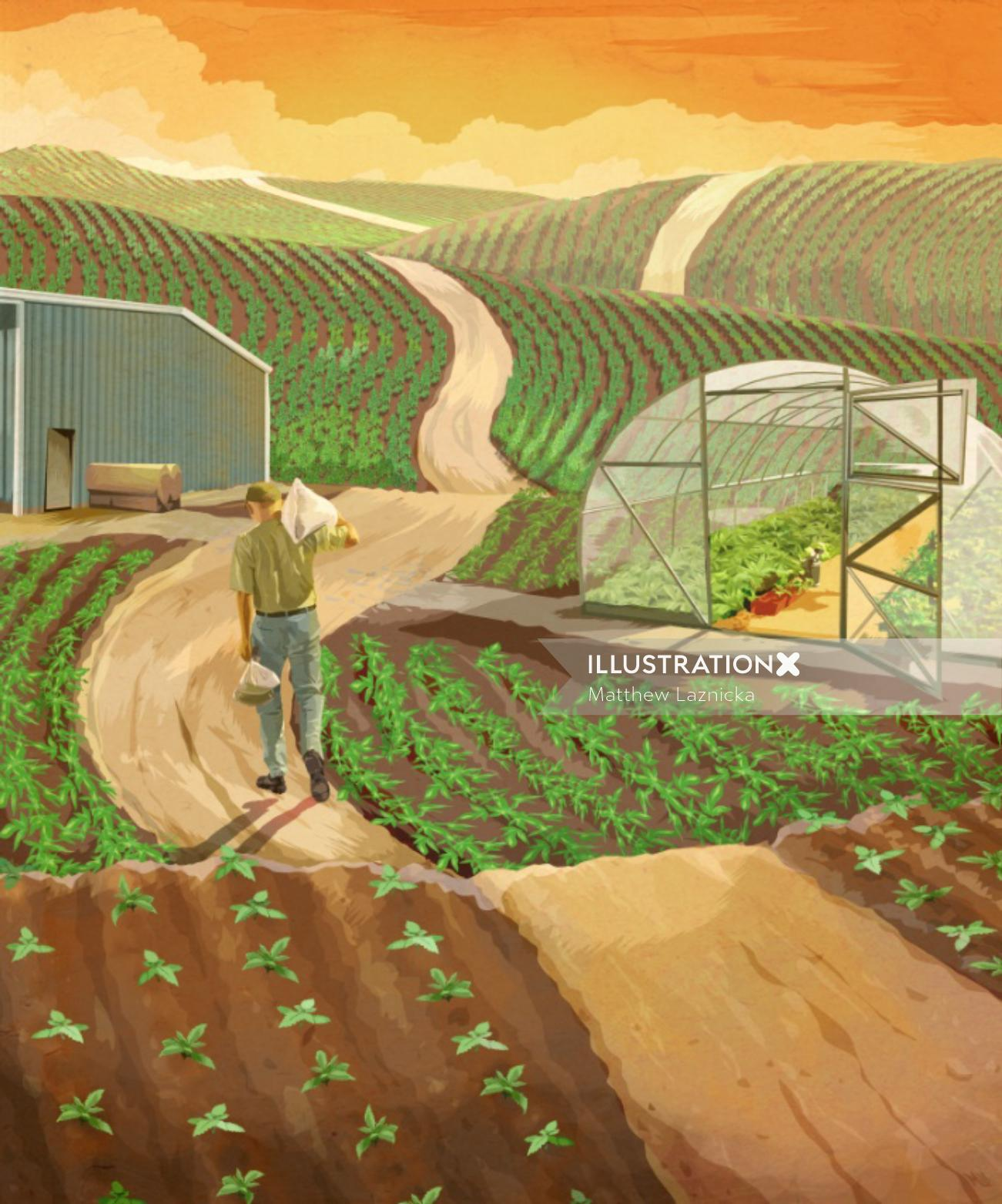 Vegetable farm digital painting