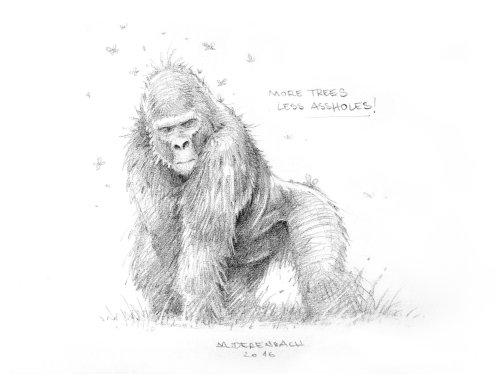 黑色和白色动物大猩猩