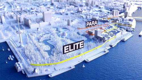 3d Map elite
