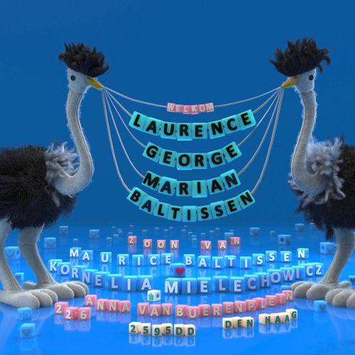 3d ostrich holding text banner