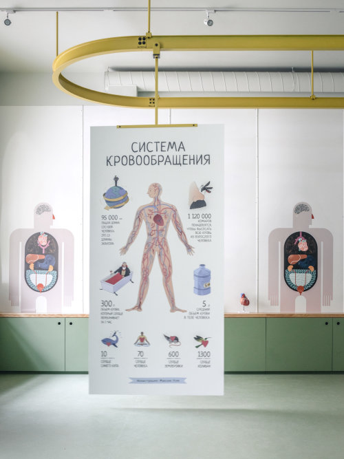 Posters for Health Museum