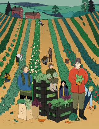 Co-operative Farms for Vihreä Lanka magazine by Maxim Usik