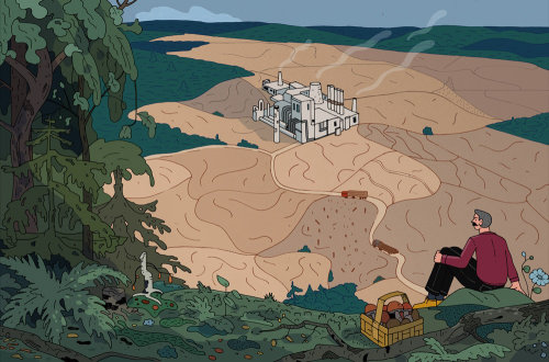 Illustration on pulp mill and it's effect on the nature