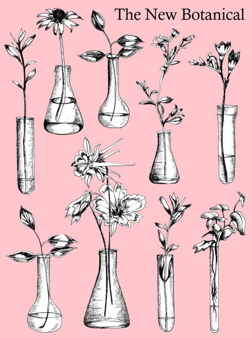 Ilustração do novo botânico