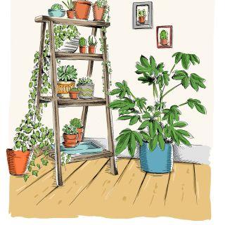 Illustration of plants on a ladder