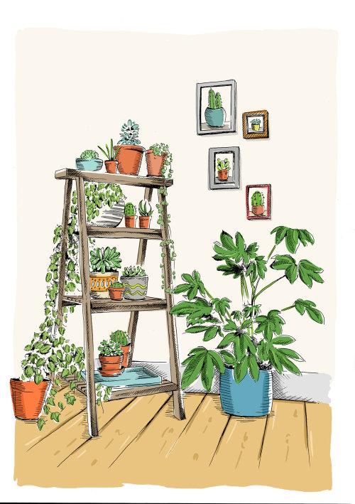 Ilustração de plantas em uma escada