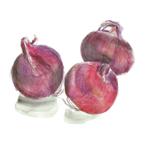 Food Red Onions