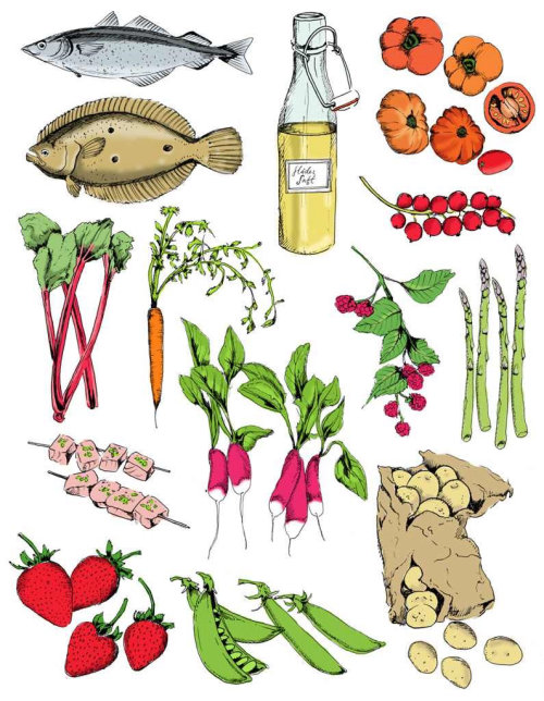 Ilustração de alimentos por May van Millingen