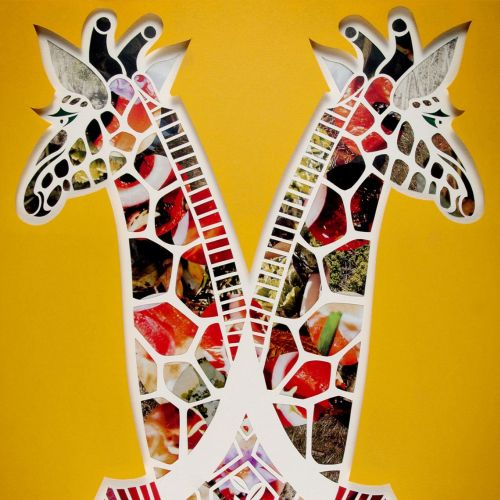 Giraffe | Animal illustration collection
