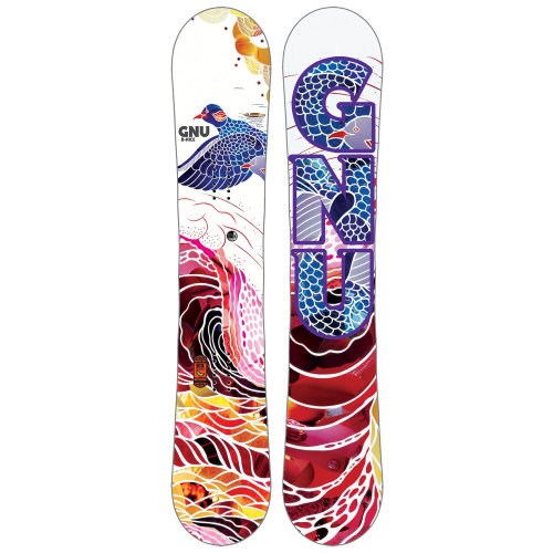 Illustration for Women's snowboard winter