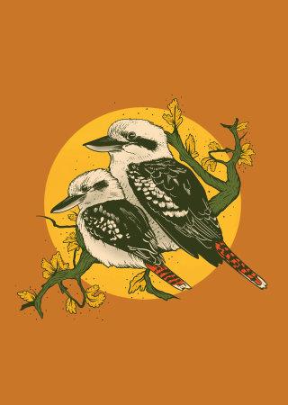Graphic art of Kookaburra by Mel Baxter