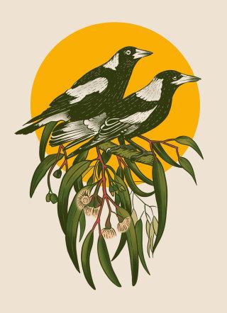 Digital illustration of Magpies