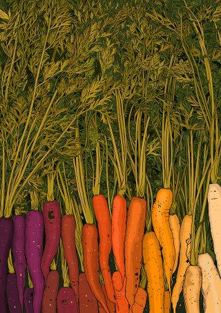 Digital illustration of Rainbow Carrots