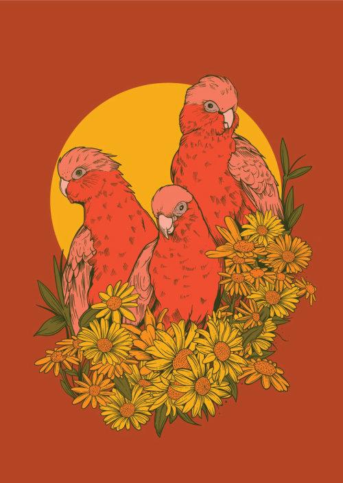 Pintura de pájaros sobre fondo naranja