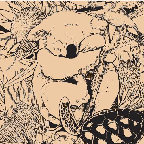 Mel Baxter Animals