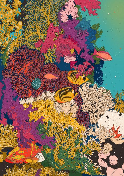 Animales peces en el agua