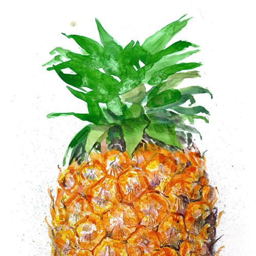 Pineapple fruit painting