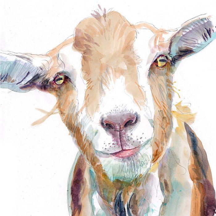 View Michael Frith's illustration portfolio