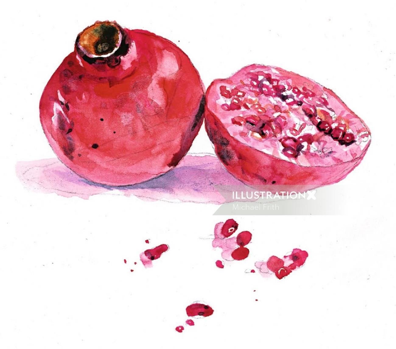 Pomegranate watercolor painting