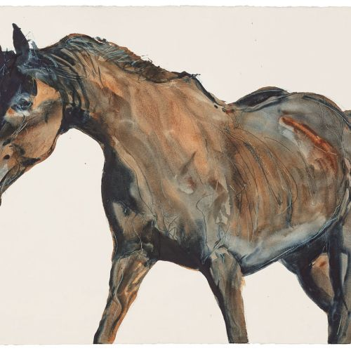 Horse portrait art