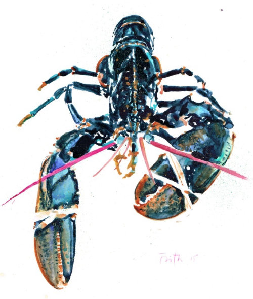 European lobster watercolor painting