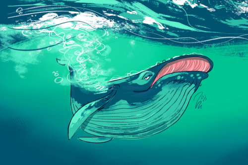 Animal Blue Whale painting
