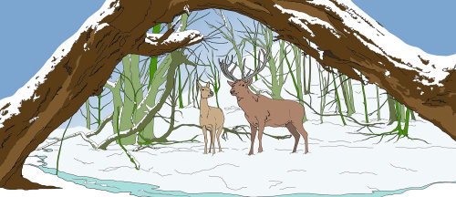 野生自然绘画和驯鹿