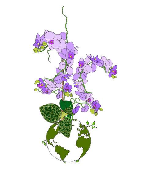 Beauty purple flowers