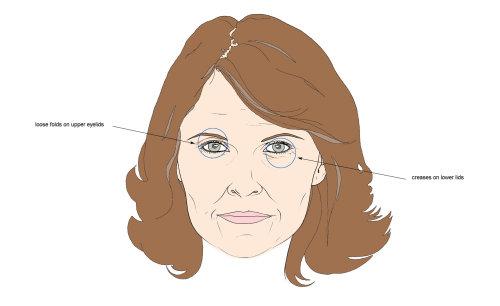 女人的眼睛插图蒙大拿州福布斯