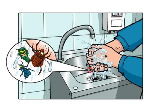 Germes morrem lavando as mãos