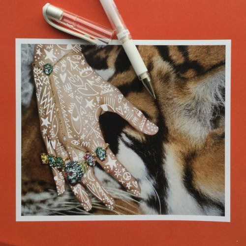 Nadia Flower Scribbles Collage & Montage Illustrator