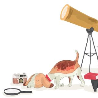 Dog and Telescope drawing