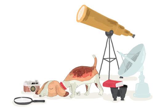 Desenho de cachorro e telescópio