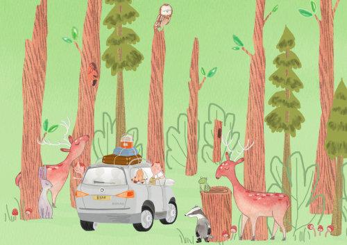 Affiche de à la recherche de Kodi l'ours