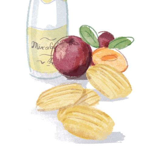 Madeleines Digital pen art for waitrose magazine
