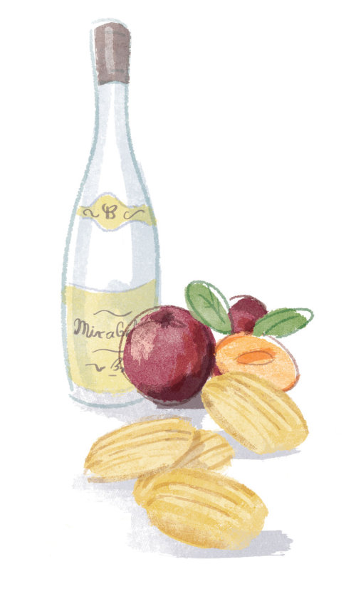 Madeleines Digital pen art para a revista waitrose