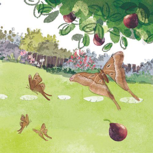 children ilustraton park