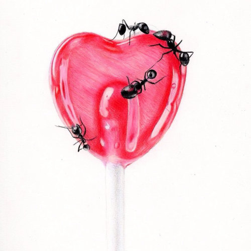 Heart shaped lollypop with ants